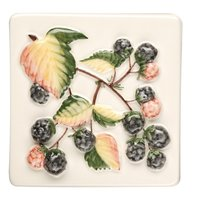 Coupe De Fruits Blackberries 100 x 100