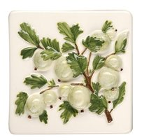 Coupe De Fruits Gooseberries 100 x 100