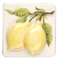 Coupe De Fruits Lemons 100 x 100