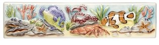 Coral Reef Emperor and Clown Fish Border 200 x 50