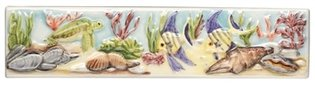 Coral Reef Turtle and Angel Fish Border 200 x 50