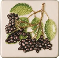 Coupe De Fruits Blackcurrants 100 x 100