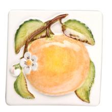 Coupe De Fruits Orange 100 x 100