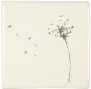 Blown Dandelion on Off White 105 x 105